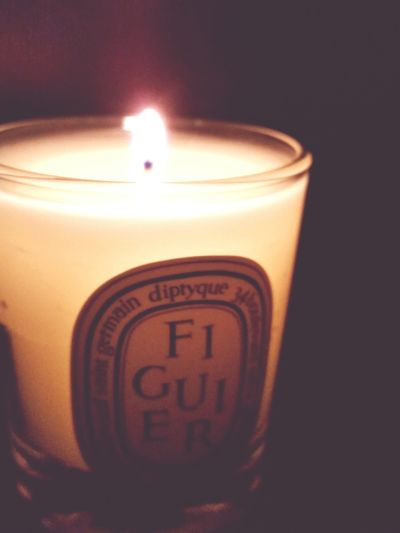 Dipping into the night Diptyque Candle