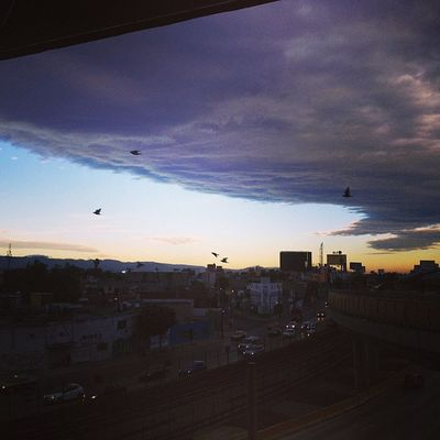 Cloud Titan #squaready #nubezota #igersdf #igersmexico #titan #cloud #nube #sky #skywatcher #skyviewer onecents #skyporn #cloudporn #nature #dawn #amanecer #proyectodf Igersdf Proyectodf Nature Mexingers Sky Skyviewers Amanecer Compartetuimagen Dawn Gf_mexico Cloud Skywatcher Cloudporn Nubezota Skyporn Skyviewer Titan Mextagram Nube 50likes Squaready 60likes Igersmexico