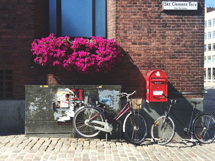 Streetphotography Street Bike Urban Denmark Traveling Exploring