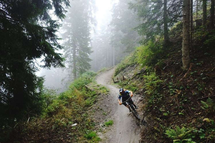 Man riding bicycle on footpath in forest
