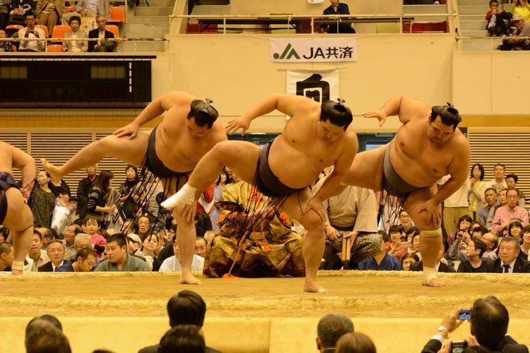 Japan Sumou