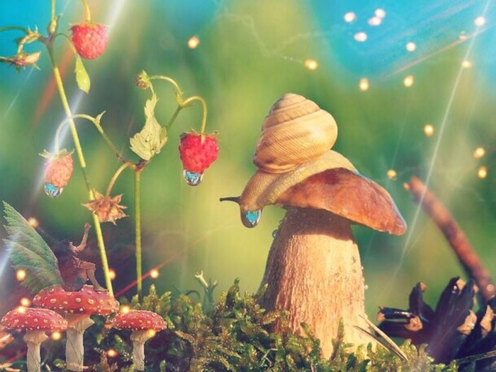 ThatsMe and my friend 🐌👈🏻 😉 Friends ❤ Relaxing Playing Lights Playing With Filters Playing With Apps  Playing With Effects Edit By Me 🍃TinkerVanny🍃 Whit Love ... Tinkervanny Colors Inspired Music https://youtu.be/RzhAS_GnJIc 👈🏻 Heart ❤ Imagine 😍😀😉😝🐌👐🏻👈🏻 Fly Mushrooms 🍄🍄