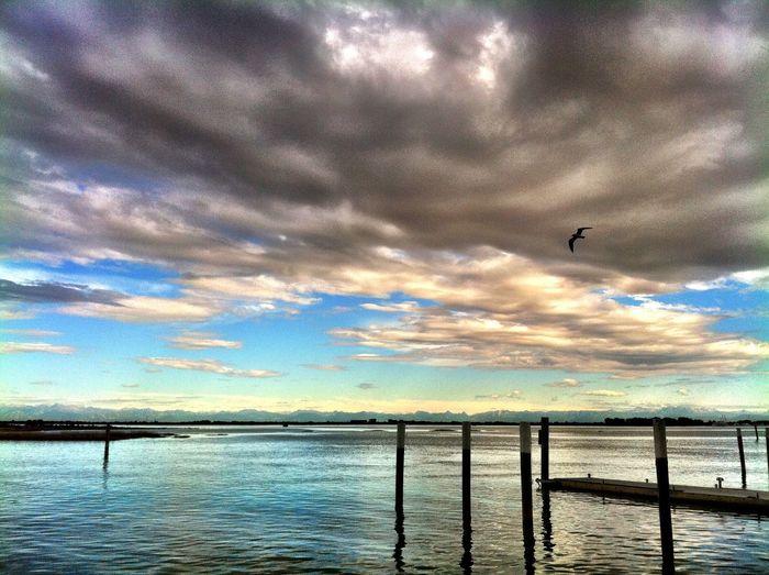 First Eyeem Photo Seagull Sea And Sky Sea Sky Italy Alps Silence Clouds And Sky Evening Lagoon Dock