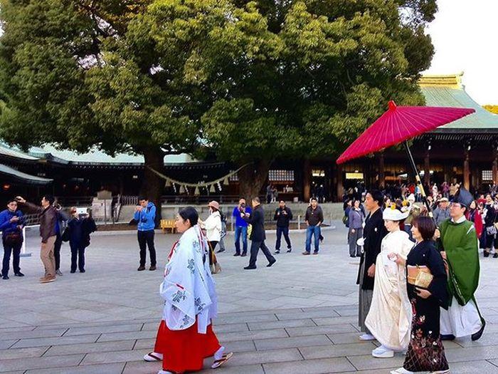 Off to get married in The Meji Shrine Japan Mejishrine Tokyo ASIA