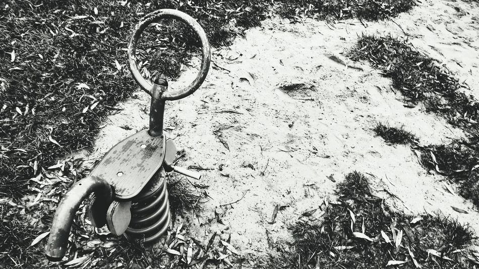 Leaves Leafs Leaves 🍁 Metal EyeEm Best Shots - Black + White Sand Playground Grass Playground Equipment Bnw Bnw_collection Bnwphotography Blackandwhite Black And White Black & White Blackandwhite Photography EyeEmNewHere EyeEm Best Shots The Week On EyeEm Playgrounds Equipment Education Fun Riders Spring Ride Springrider Day No People Outdoors Close-up EyeEm Ready