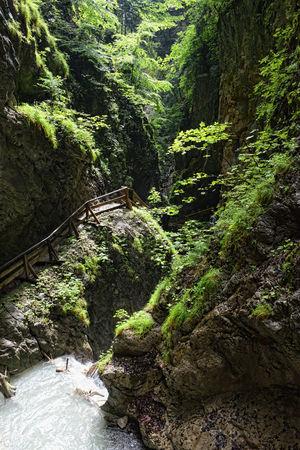 hiking through the Wolfsklamm gorge on stairs. European Alps. Part of Karwendel mountains. Alps Austria Austria ❤ Canyon Canyons Europe European Alps Gorge Klamm River Stallenbach Stallenbachtal Stream Tirol  Tyrol Tyrol-Austria Valley Water Waterfall Waterfalls Wolfsklamm