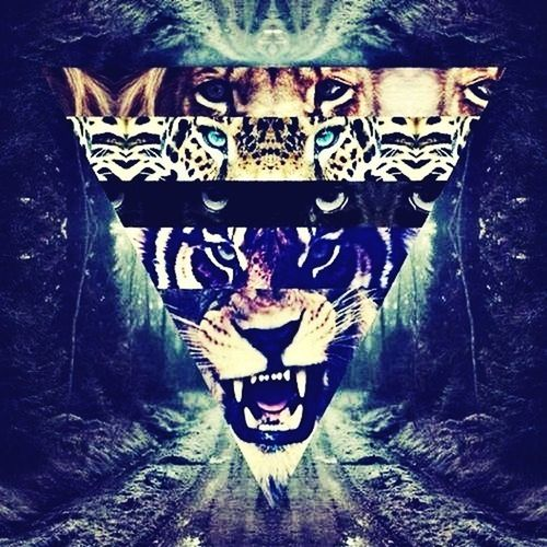 Hipster Collage Tiger