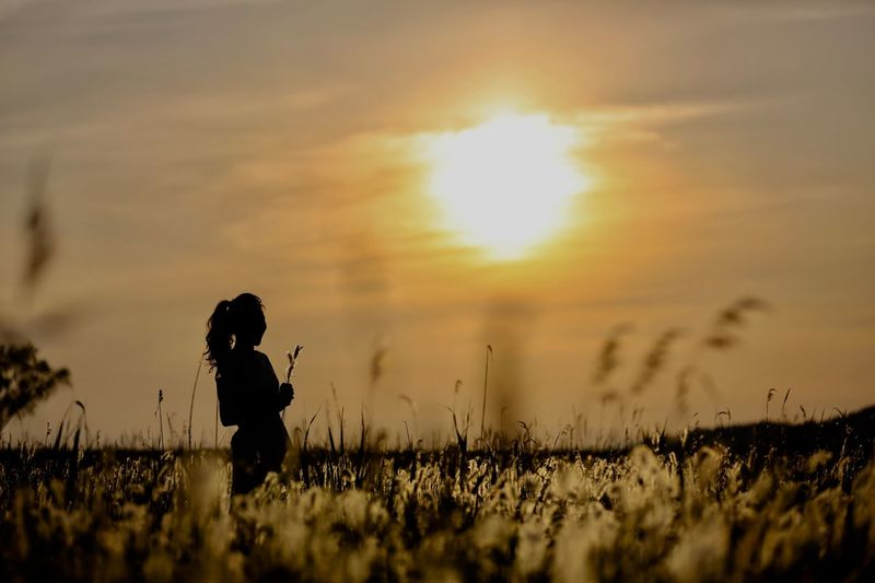 Sunset One Person Sky Real People Plant Nature Field Cloud - Sky Land Beauty In Nature Lifestyles Outdoors Women Tranquility