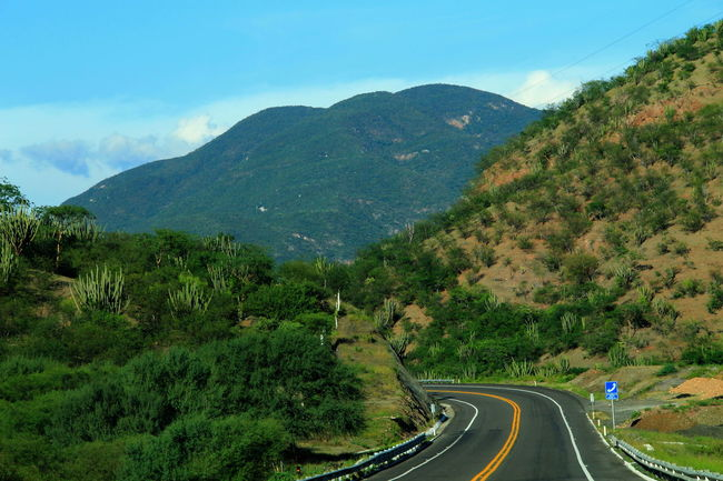 Atardecer Chiapas, México Clouds And Sky Dogs Flower Queretaro,Mexico Roadtrio Wood Been There.