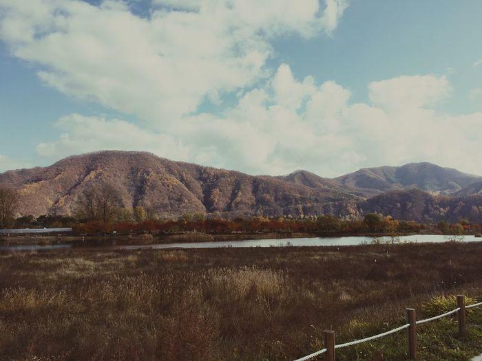 Autumn Autumn🍁🍁🍁 Nami Island Jarasum First Eyeem Photo IPhoneography