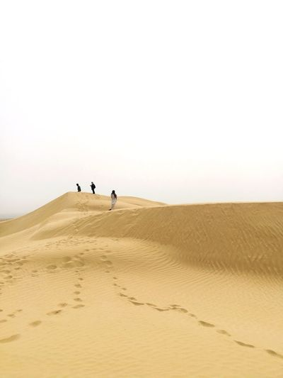 Sand Dune Desert Arid Climate Clear Sky Full Length Sand Accidents And Disasters Environment Sunny Nature Reserve