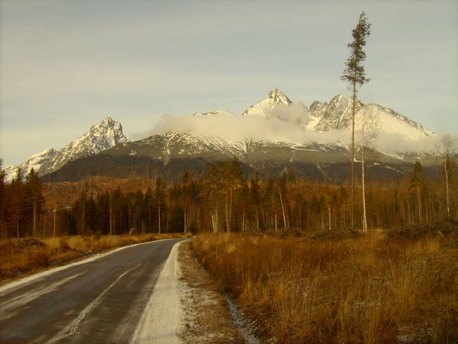 Cold Temperature Country Road Covering Landscape Mountain Mountain Range Non-urban Scene Perspective Remote Scenics Slowakia Snow Snowcapped Tatra Mountains The Way Forward Tranquil Scene Tranquility Weather Winter