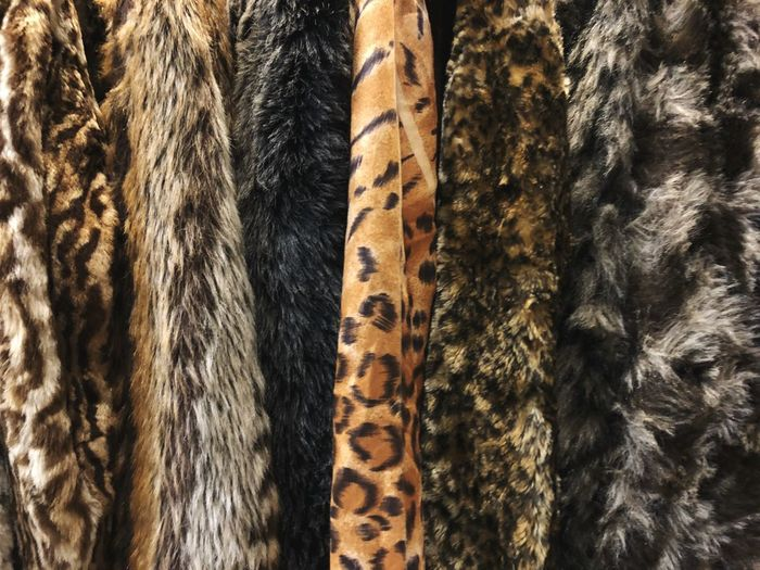 P A T T E R N II Clothing Pattern Kleidung Clothing Pels Backgrounds Full Frame Textile Pattern No People Close-up Textured  Animal Animal Wildlife Tree Trunk Animal Themes Indoors  Natural Pattern Day Trunk Curtain Striped Nature Detail Animal Skin Animal Body Part Indoors  Mammal Nature Fur Coat