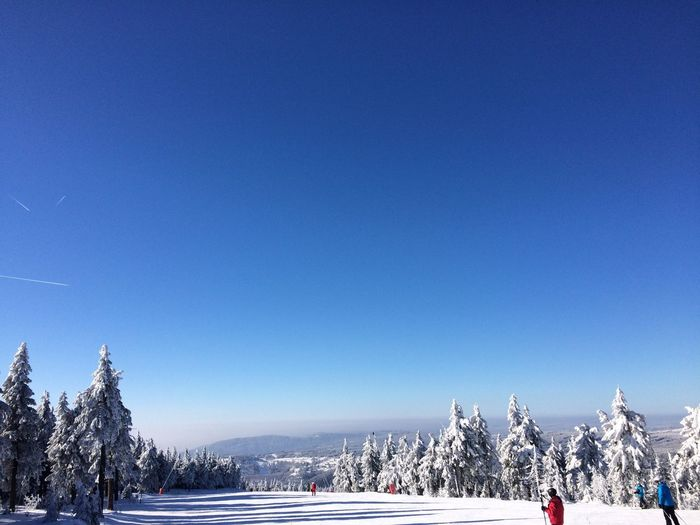 Snow Winter Cold Temperature Blue Beauty In Nature Nature Tree Scenics Tranquil Scene Clear Sky Outdoors Frozen Day Sky No People Mountain Slope