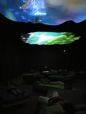 Pipilotti Rist Night Landscape Moon Nature Star - Space No People Water