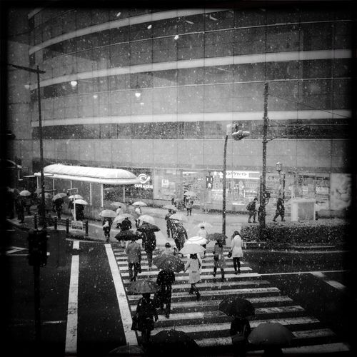 Snow day in Tokyo Commuting BlacKeys SuperGrain Film Snow Day