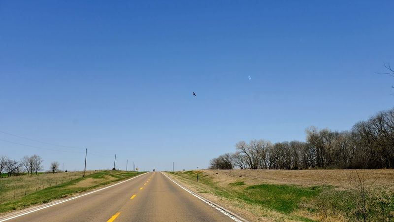 Visual Journal April 14, 2018 Southeast, Nebraska A Day In The Life Camera Work Eagle EyeEm Best Shots Getty Images Photo Essay Rural America Visual Journal Always Taking Photos Animal Beauty In Nature Clear Sky Country Day Diminishing Perspective Direction Environment Eye For Photography Flying Fujifilm_xseries Highway Photography Landscape My Neighborhood My Neighbourhood Nature No People Outdoors Photo Diary Plant Road Rual Landscape Rural Life S.ramos April 2018 Sky Small Town Stories The Way Forward Tranquility Transportation Tree Vertebrate