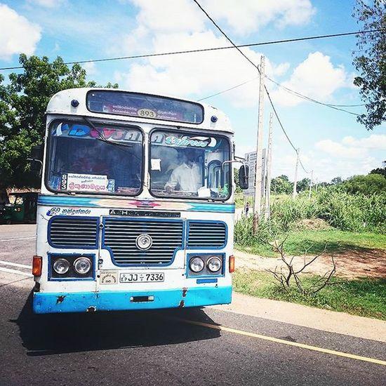 (๑• . •๑) Bus Sky Holiday SriLanka