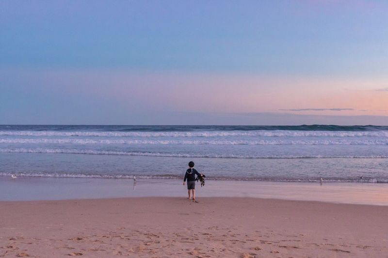 Rear view of boy carrying seaweed on sea shore against sky during sunset