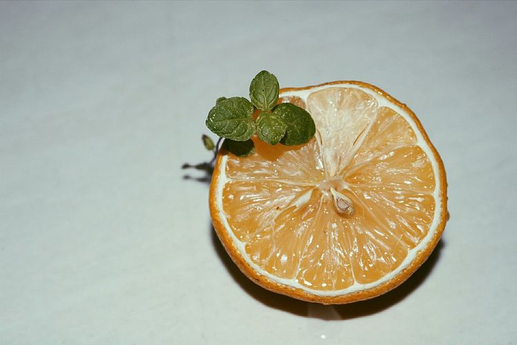 High angle view of lemon slice against white background