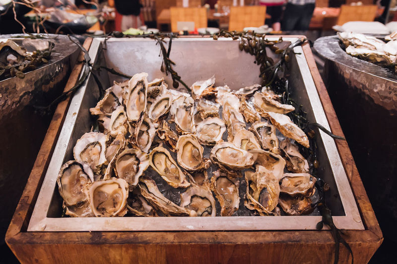 Cuisine Freshness Seafood Animal Buffet Container Fish Fish Market Fishing Industry Food Food And Drink For Sale Freshness Healthy Eating Hotel Large Group Of Objects Market Market Stall Oyster  Restaurant Retail Display Sale Sea Seafood Shell