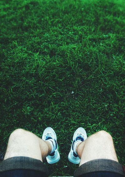 Summer Volgograd Grass Lawn Green Foods Streetphotography Enjoying Life Walking Nexus5