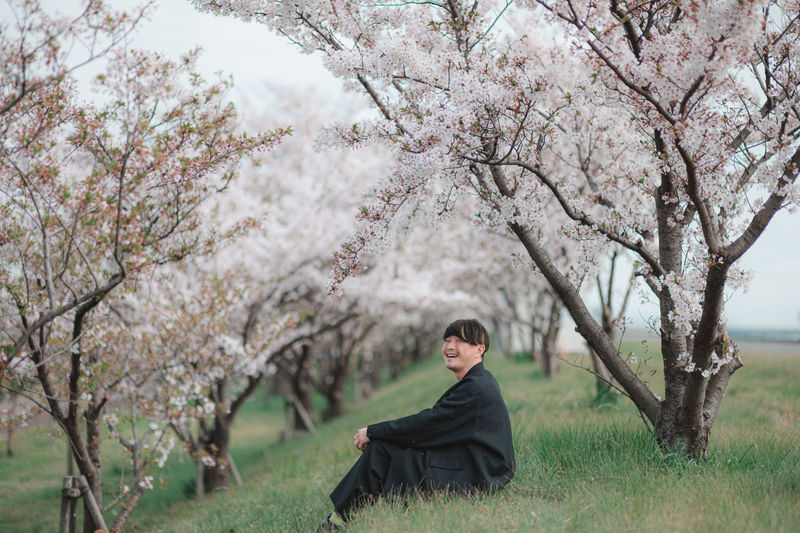 Portrait of cherry blossoms in park