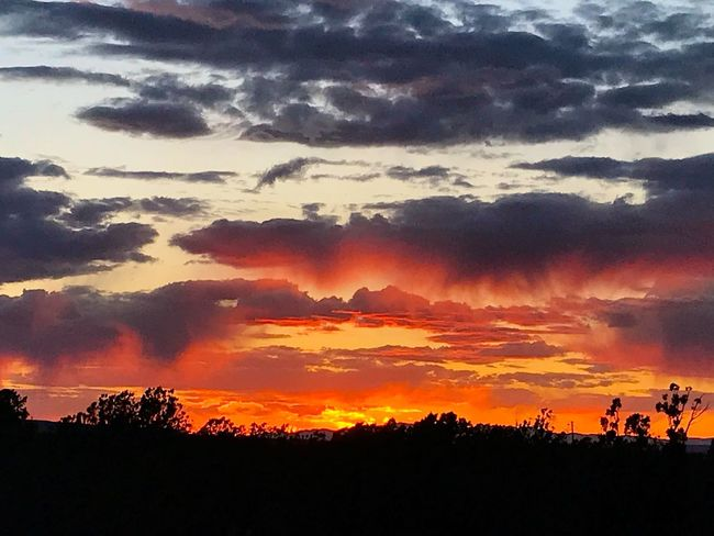 """Fire In The Sky"" A blazing Central New Mexico sunset appears to ignite the sky in fiery amplitude. Sundown Evening Sky Dusk Clouds And Sky New Mexico Skies New Mexico Photography New Mexico Sunsets Sunset Cloud - Sky Sky Beauty In Nature Silhouette Scenics - Nature Orange Color"