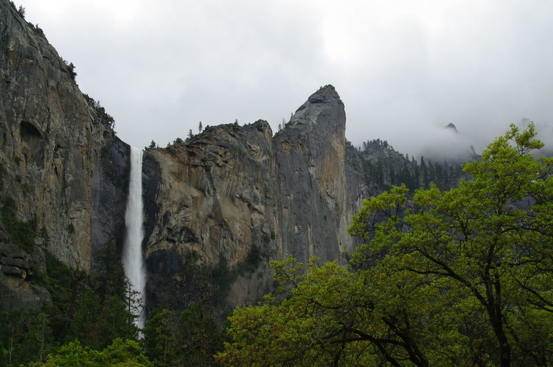 Beauty In Nature Cliff Day Fog Forest Mountain Nature No People Outdoors Rock - Object Scenics Sky Tree Water Waterfall Yosemite Falls Yosemite National Park