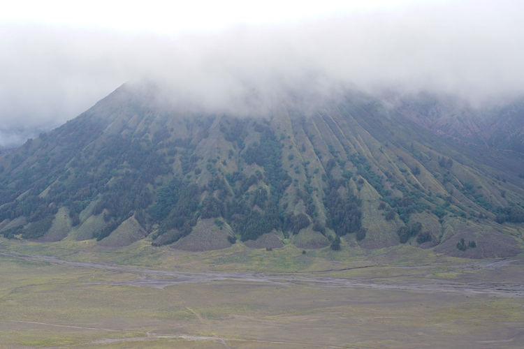Mount Bromo and thick fog Environment Landscape Mountain Scenics - Nature Beauty In Nature Non-urban Scene Land Tranquil Scene Nature Day Tranquility No People Fog Sky Cloud - Sky Remote Outdoors Plant Travel Destinations Bromo Bromo-tengger-semeru National Park