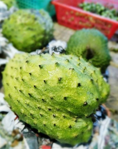 Soursop Green Color Fruits Fruits Lover Good For Health
