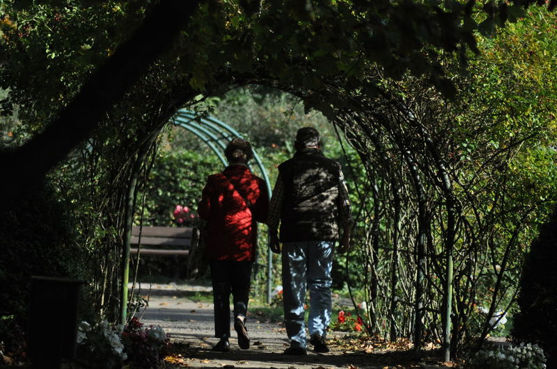 Rear view of woman and man walking on covered footpath amidst plants at park