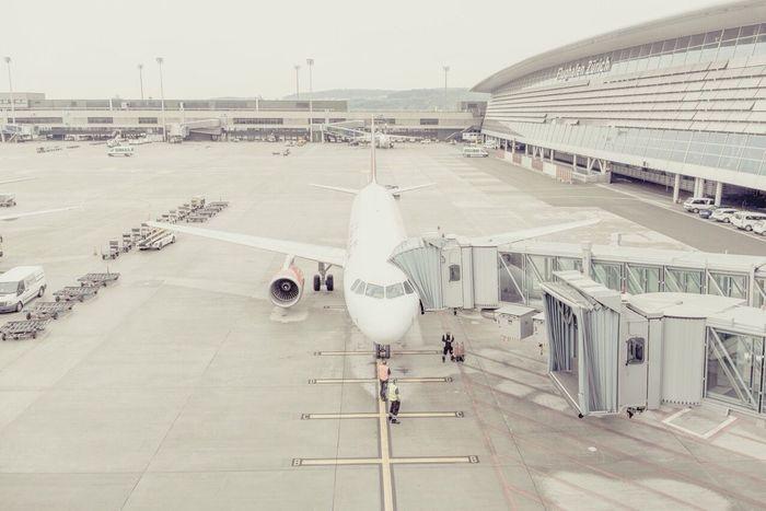 Airport Plane Boarding Visiting
