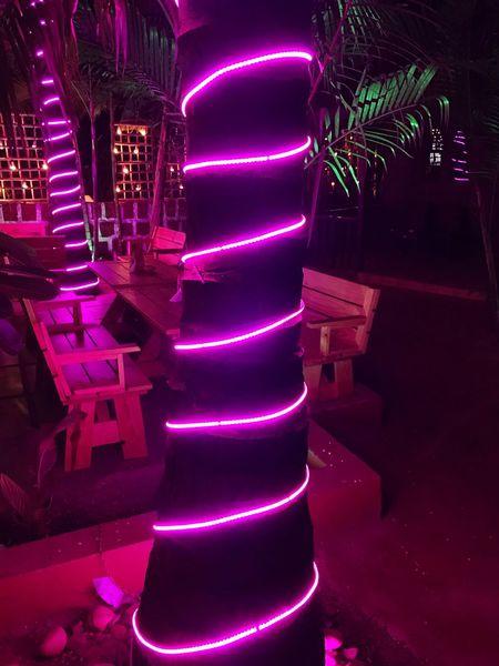 Millennial Pink Goa Ashwem Beach Beautiful Pink IPhone Photography IPhone 7 Plus Light