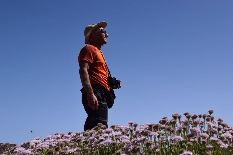 Man standing by flowering plants against clear blue sky