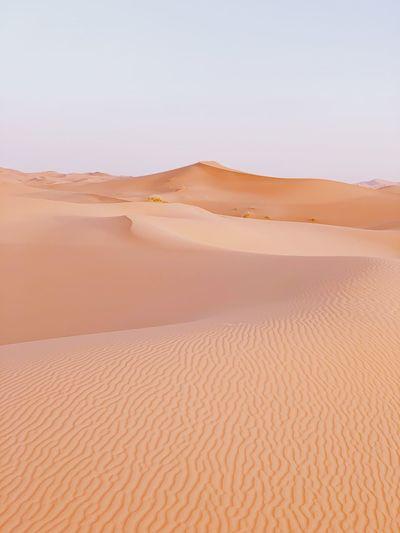 Morocco descert
