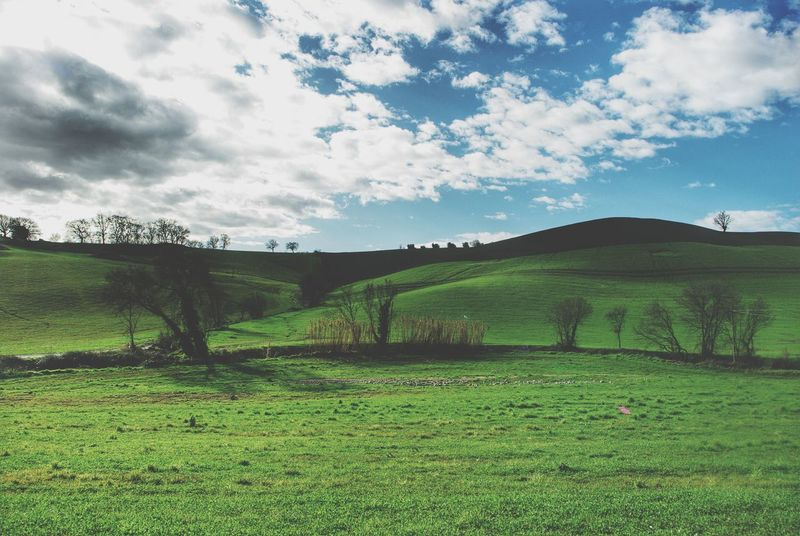 Landscape Landscapes With WhiteWall Greenfields Tuscany Italy Dramatic Sky Sky And Clouds