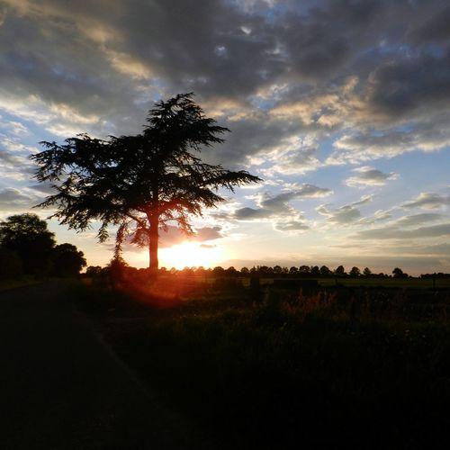 Sunset Zonsondergang Nature De Natuur Op Z'n Best