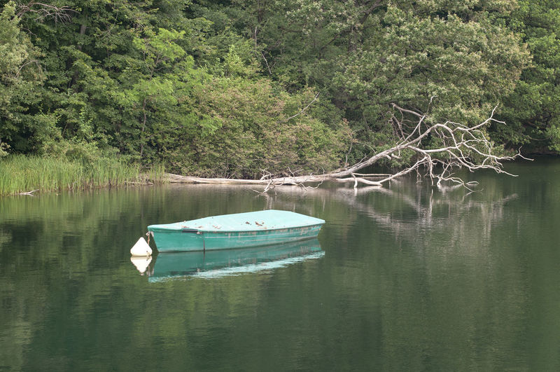 Boat moored on lake by trees