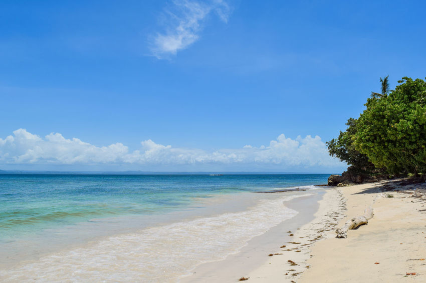 Beautiful beach with blue sky and turquoise water, green plants in the caribbean sea Beautiful Clear Sky Exotic Green Bacardi Island Beach Beauty In Nature Blue Cloud - Sky Cloudless Costline Day Horizon Over Water Nature No People Nobody Outdoors Sand Scenics Sea Sky Tranquil Scene Tranquility Tree Water