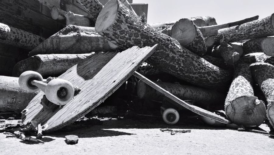 Stack of logs on field
