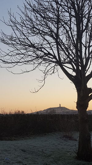Nature Tree Beauty In Nature Silhouette Sky Scenics Outdoors No People Winter Bare Tree Bird Flying Day Cold Winter ❄⛄ Frosty Mornings Castle Hill Huddersfield Yorkshire Sunrise
