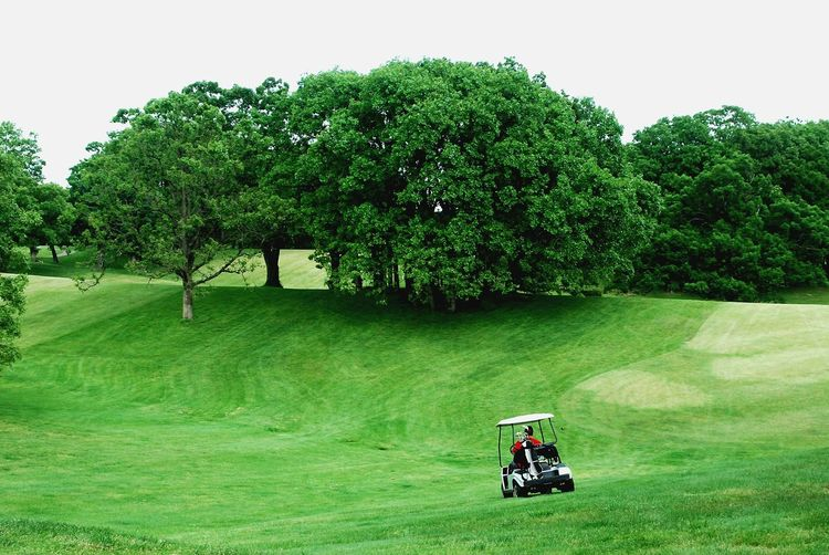Golf Cart Moving In Green Course Against Trees