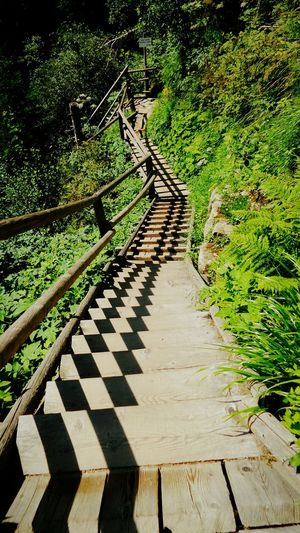 Walking Around Taking Photos Eye Em Nature Lover Stairs_collection Structural Muster Ausflug in die Raggan Schlucht Austria Wanderlust Wanderlust Nature Your Design Story Fine Art Photography Beauty In Nature On The Way The Journey Is The Destination