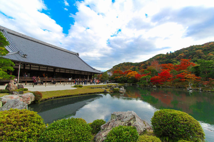 Tenryu-ji, tokyo Arashiyama Japan Kyoto Mapleleaf Photo Tenryuu-ji Temple Travel View Historical Building Tree Water Sky Cloud Temple Autumn Autumn Leaves