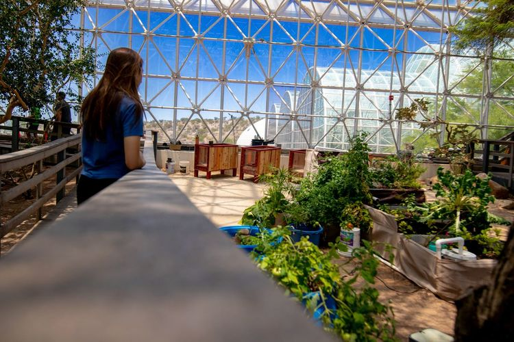 Outside indoors Biosphere 2 Science And Technology Green Color Science Experiment Politics And Government City Women Rear View Architecture Sky Building Exterior Greenhouse Horticulture Growing Botanical Garden Plant Nursery Planting Botany Gardening