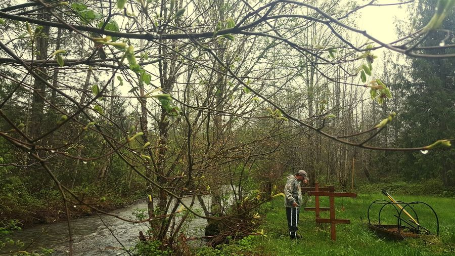 TCPM Tree One Person Real People Nature One Boy Only Adult Beauty In Nature Day Grass Outdoors Standing Sky Gold Bar ,Washington Washington State Gardening Gardener Gardener's Backyard.... Garden By The River Breathing Space