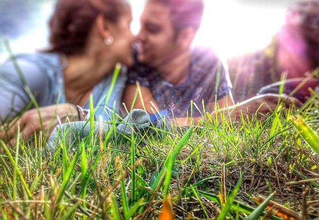 Grass 2 People Love