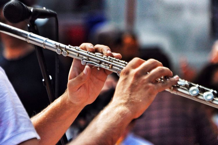 Magic Flute Musican Flauta Flautista