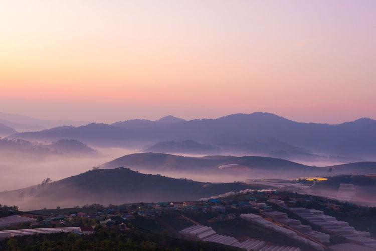 Morning dew in dalat